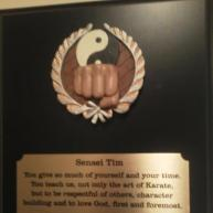 2012 Karate Plaque