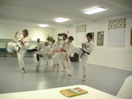 Sensei Tim leading students in kicking drills.