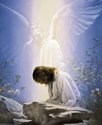 My Guardian Angel Home Care