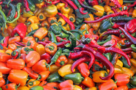A sea of Hot Peppers