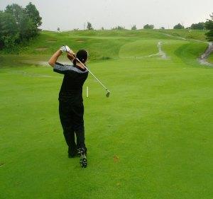 golf fairway game