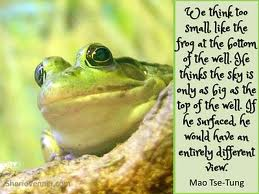 Your problems are too small frog that does not see opportunity